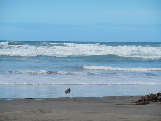 Morro Strand State Beach : Pristine beaches and views for miles...