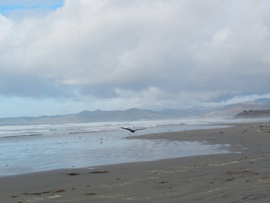 The view looking north from Morro Strand State Beach.