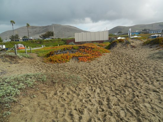 Morro Strand State Beach : Looking towards the campground from the beach on one of several well maintained pathways.
