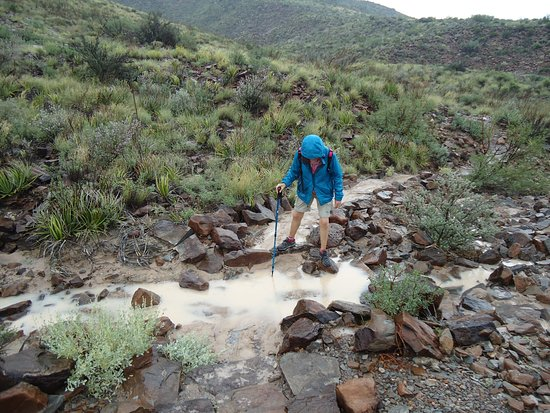 Alpine, Техас: Big bend trail under a hot rain