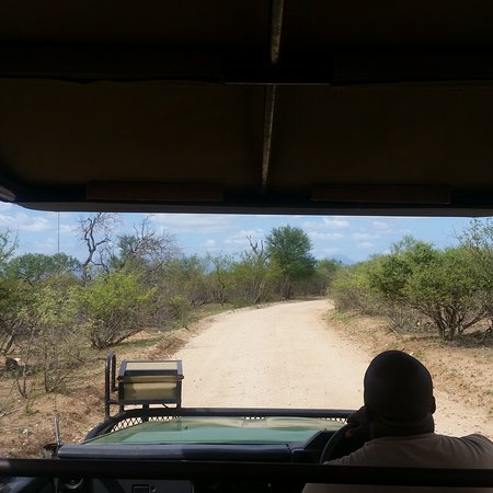 Balule Nature Reserve, South Africa: View while on a game drive