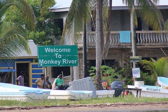 Placencia, Belize: Monkey River Village