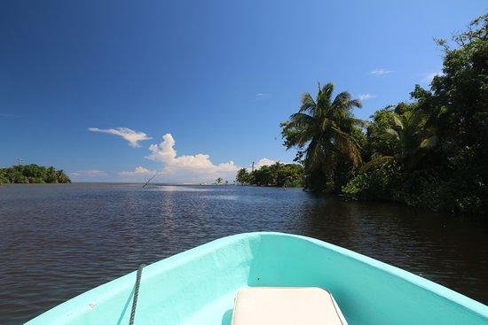 Placencia, Belize: Monkey River