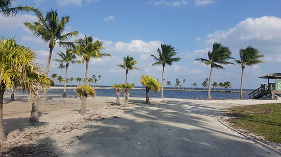 Matheson Hammock Park Miami 2018 All You Need To Know Before Go With Photos Tripadvisor