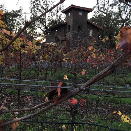 Healdsburg, Kalifornien: photo6.jpg