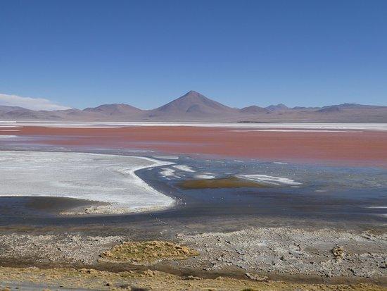 Uyuni, Bolivia: Red lagoon