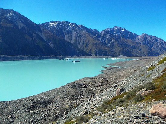Mt. Cook Village, New Zealand: The lake and ice floes