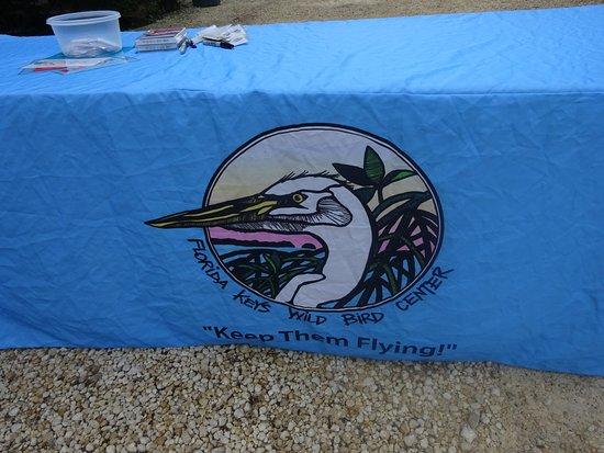 Tavernier, Floryda: Wild Bird Sanctuary