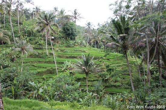 Tegalalang, Indonezja: Gunung Kawi Sebatu tempel