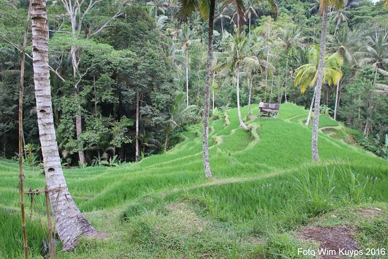 Tegalalang, Indonesia: Gunung Kawi Sebatu tempel