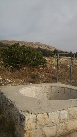 Jenin, De palestinske territoriene: Jubb Yusuf (the well Yusuf was thrown in) is just 5 min away from the Guesthouse