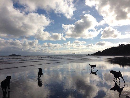 Kinghorn beach