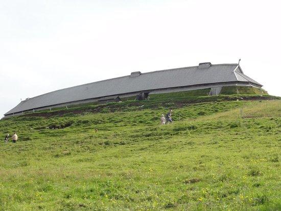 Vestvagoy, النرويج: DSC06762_large.jpg