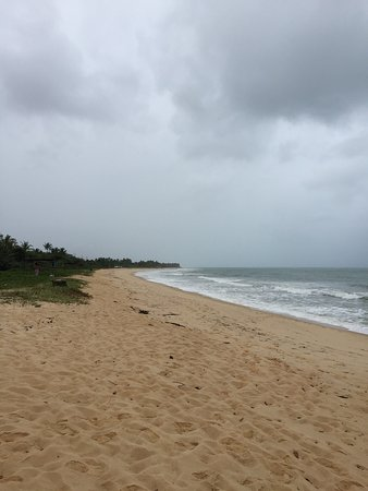 Nativos Beach: photo1.jpg