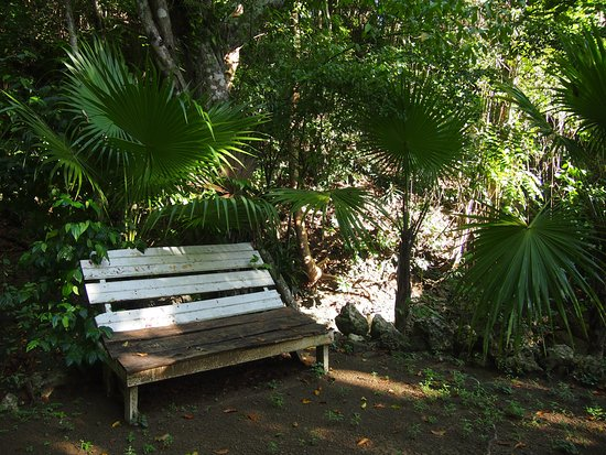 Port Maria, Jamaica: Chill out bench near the river and natural swimming pool.
