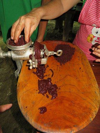 Puerto Jimenez, Costa Rica: making chocolate!!