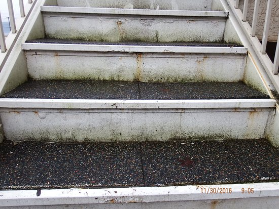 Salmon Arm, Canadá: I felt like I was going to fall through these steps, lots of give to them.
