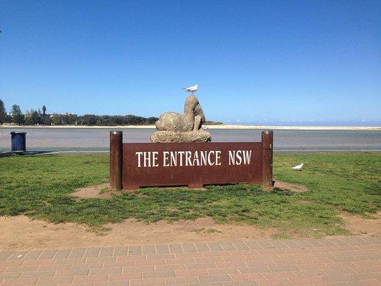 The Entrance, Αυστραλία: photo2.jpg