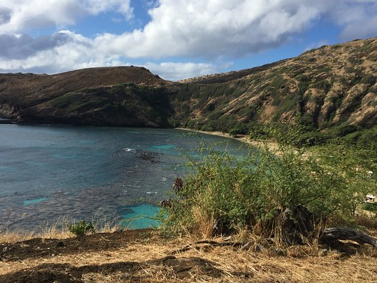 Hanauma Bay Nature Preserve Photo