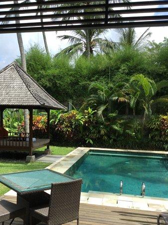The Samaya Bali Ubud Photo