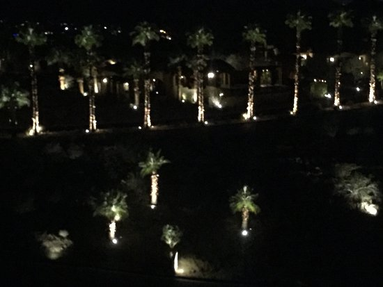 Rancho Mirage, كاليفورنيا: palm trees light the way, view from my 3rd floor room