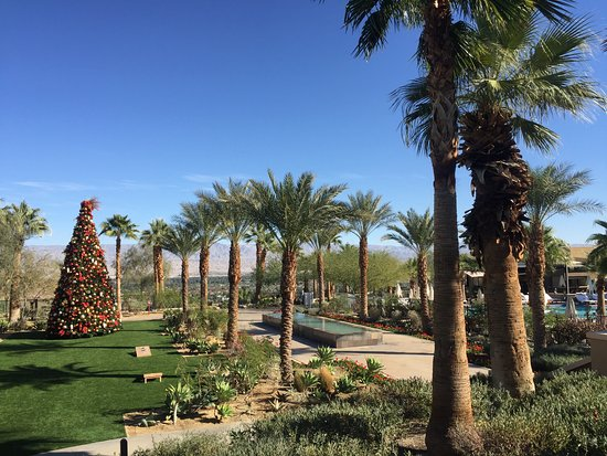 Rancho Mirage, كاليفورنيا: beautiful garden set up with Christmas tree, next to children pool