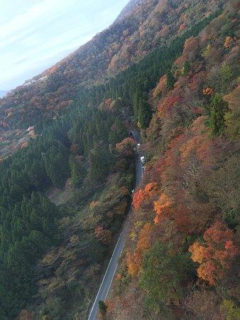 Fuji, Japón: autumn view