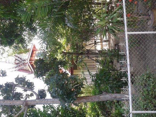 Wat Bussayabanpot: 20161202_130629_large.jpg