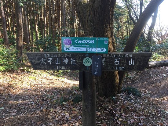 Ohira Moutain: 太平山