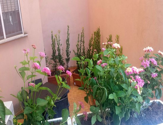 Il Giardino di Adriana B&B