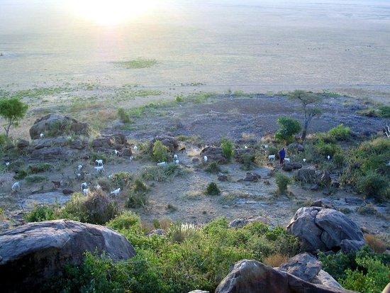 Región de Arusha, Tanzania: vue du Serengeti