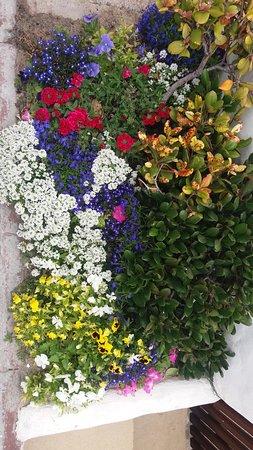 Melkbosstrand, Republika Południowej Afryki: Flowerpot