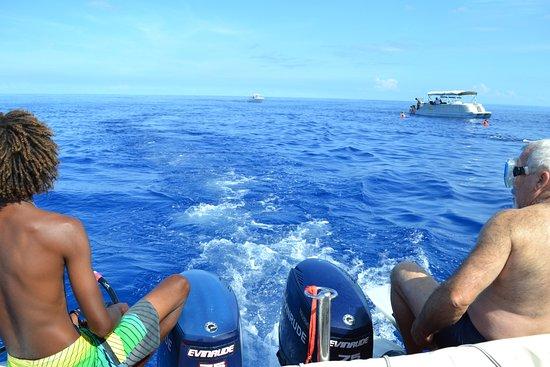 La Gaulette: prêt pour aller nager avec les dauphins