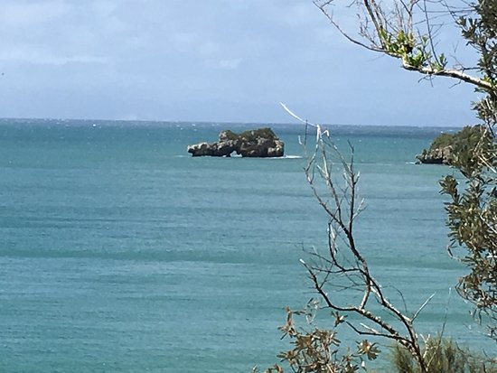 Mt Eliza, Australia: I wonder what we'll find out there.