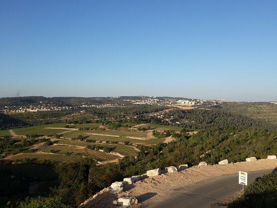 Shoresh, อิสราเอล: Musa Bahar