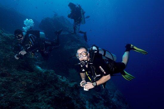 Остров Тхулусдхоо: Diving activities
