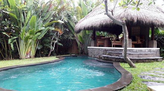 Garten Mit Pool eigener garten mit pool picture of wakagangga tabanan tripadvisor