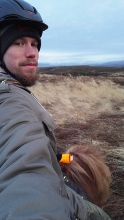 Копавогюр, Исландия: Gaski Horse Center