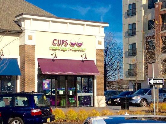 Fair Lawn, NJ: Cups Frozen Yogurt