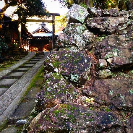Sano, Japan: 唐沢山神社