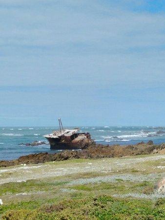 Kap Agulhas, Südafrika: IMG_20161130_092148046_large.jpg