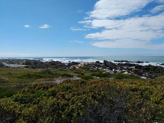 Kap Agulhas, Südafrika: IMG_20161130_091240163_large.jpg