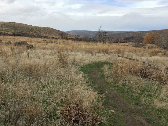 Yakima, WA: beaten yet maintained trail