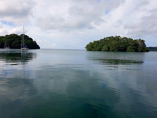 Lami, Figi: 20161130_090706_large.jpg
