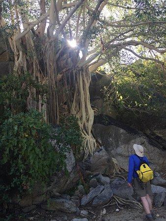 Santiago, Meksika: Baja Sierra Adventures- Day Tours