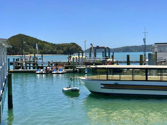 Paihia, Nueva Zelanda: Location of Tango Jet Ski Tours on the Paihai pier