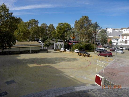 Calle Paseo del Fresno: Plaza paseo del Fresno