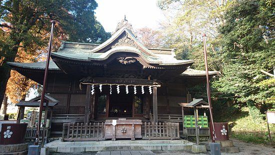 Kunitachi, ญี่ปุ่น: DSC_0902_large.jpg