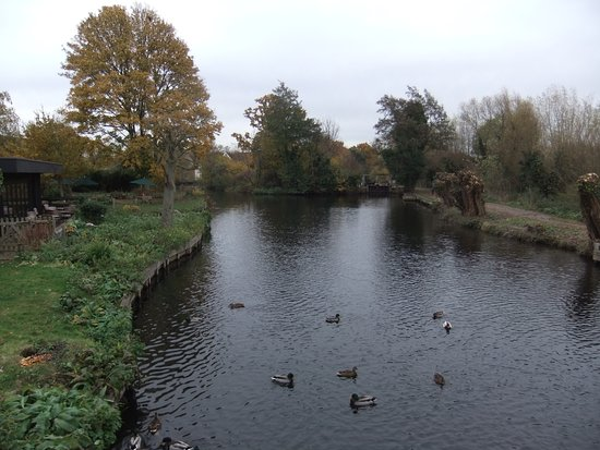 East Bergholt, UK: View from the bridge