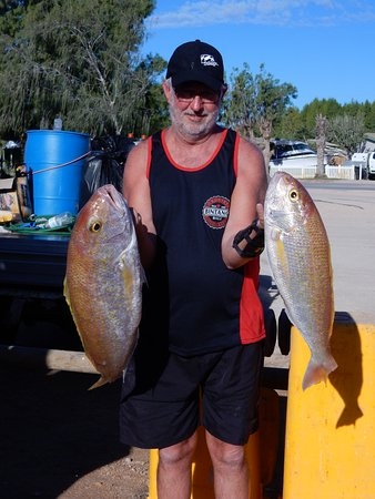 Coral Bay, Australie : Just a couple of the fish that I caught. Gold ban snapper.